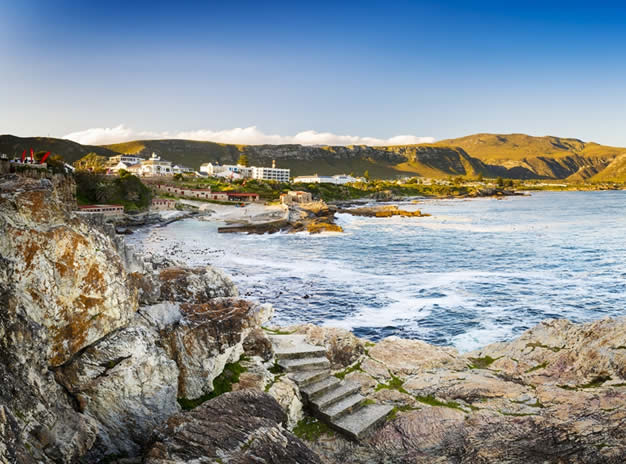 Hermanus / Whale Route Private Tour